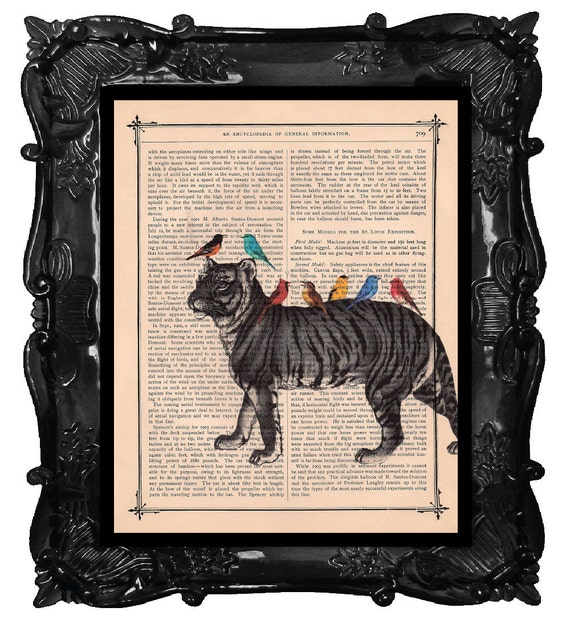 Tiger and colorful birds art print - tiger art - birds wall art tiger art on antique book page music dictionary print tiger and birds