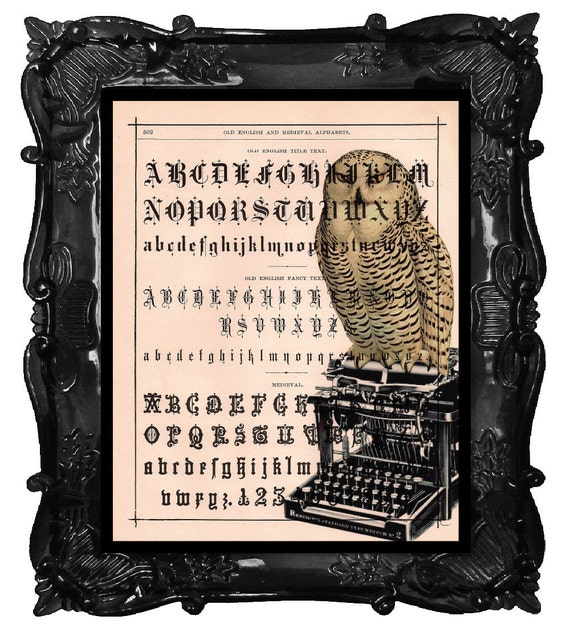 Owl on a vintage Typewriter Art Print 'The Alphabet Owl' print over an upcycled vintage dictionary page book art