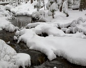 Snowy River, Winter Landscape Nature Photography, Forest in the snow white, woodland