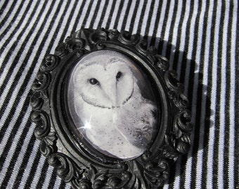 Owl Jewelry brooch black resin frame featuring black and white photograph under glass
