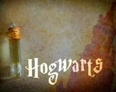 Hogwarts Fragrance Oil