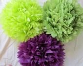 Set of 3 Tissue Poms --- Pick Your Colors SALE