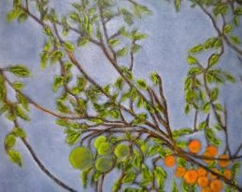 Citrus Branches Orginal Oil Painting - Framed