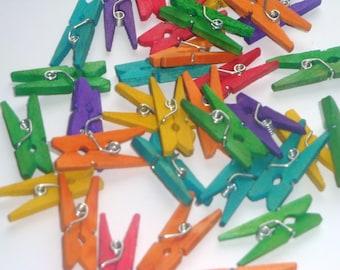 Mini Craft Clothespins 15pcs