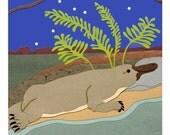 Platypus and Ferns Card