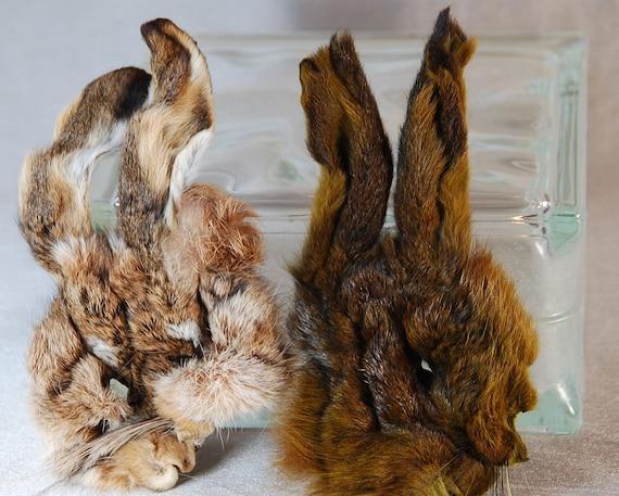 Two Rabbit Animal Skin Heads