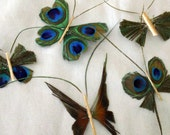 SET of 5 Peacock Butterfly Hair Clips