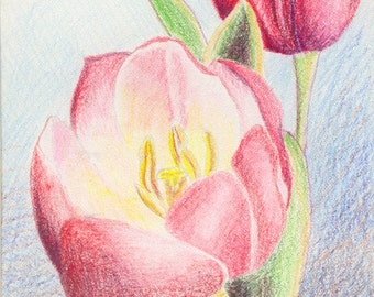Tulips (Reproduction)