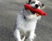 The Big Weenie Dog Toy with Rawhide Inside
