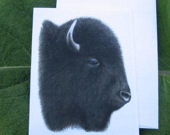 Buffalo Notecard