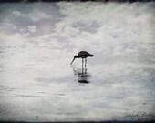 Solitude - 8x10 - Surreal Photography - SeaLilyStudio