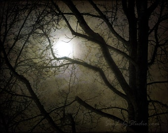 Winter Moon : fog tree silhouette haunted halloween cemetery goth gothic ghost story spooky dream eerie 8x10 11x14 16x20 20x24