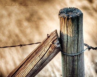 Fence Post : rustic photography wood rusty nail barbed wire field farm ranch western cowboy home decor 8x10 11x14 16x20 20x24 24x30