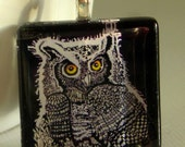 Gothic, Celtic, nature -Horned Owl at Night  1inch glass tile NECKLACE