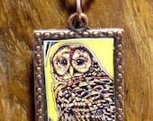 Copper Framed Barred Owl Necklace