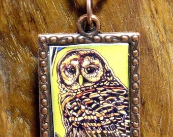 Copper Framed Barred Owl Necklace