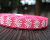 Hot Pink grosgrain ribbon with white summer Gerber Daisy 3/8 inch / great for korkers