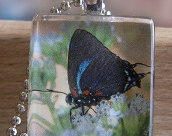 Purple Hairstreak Butterfly Glass Tile Pendant