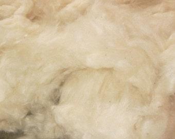 KAPOK FIBER - Plant fiber for stuffing