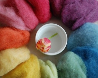 RAINBOW FLEECE - organic wool, plant dyed  100gr, 12 colours