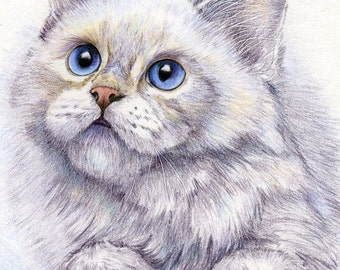 Limited Edition Giclee Print of a White Cat from an Original Painting by Gayle