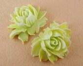 34-00-CA  2pcs Natural Shape Pretty Big Rose Cabochon - Buttercup / White