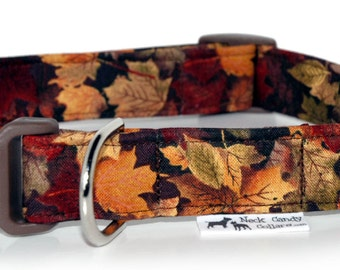 Dog Collar     Autumn Leaves,,, Custom Dog Collar