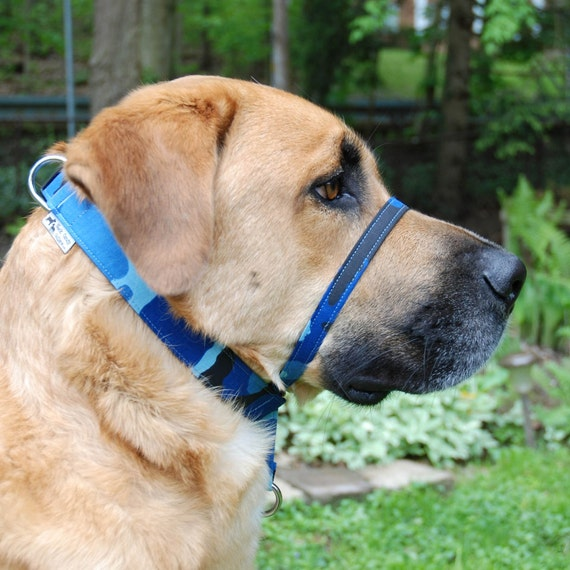 Gentle Lead - Head Collar by Neck Candy Collars