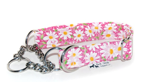The Chain Martingale Collar in your choice of Fabric  1/2in, 3/4in or 1 inch widths
