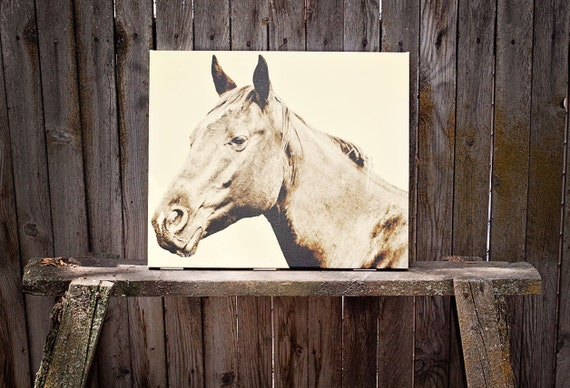 60% off Canvas Sale, Canvas Art, Large Canvas Print, Size 24x20, Horse Photography
