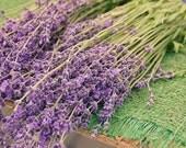 4x6 Print - Lavender Flower Photograph - Spring Pastel Romantic Purple Bundle Bouquet