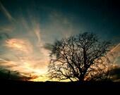 Sunset Silhouette - 8x12 Fine Art Print