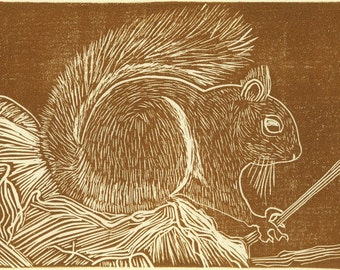 SQUIRREL  Linocut Hand Pulled Print Signed ORIGINAL