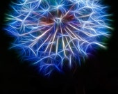 "Photography- Dandelion Art - Dandelion Blue - 8x10"" Fine Art Print - Flower Photography - Home Decor - Macro - Surreal"