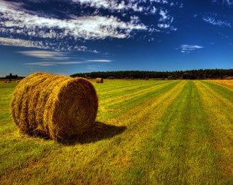 "Photo Art - Country photography - Farm Photography - Landscape Photography - Fine Art Photography - Hay Bails- 8 X 12"" Prints"