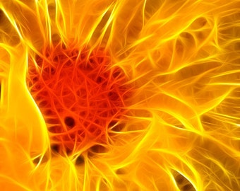 Fine Art Photograhpy- Fractal Dahlia Flames - 8x12 - Flower - Home Decor - Surreal