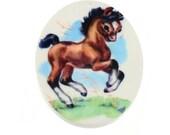 B04 Vintage Cute Pony Oval Printed Acrylic Pendant