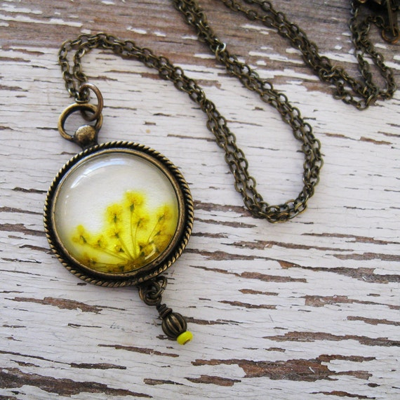 Real Pressed Flower Necklace - Sunrise Queen Annes Lace Vintage Inspired Necklace in Antique Brass