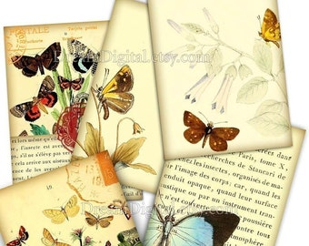 Butterfly Illustrations, Digital Download Collage Sheet, Instant Download, Digital Background