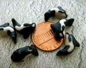 4 Tiny Orca Beads - CB61