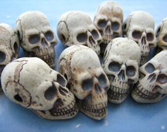 10 High Fired Skulls - long jaw - HIFI 192