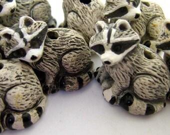 10 Large Raccoon Beads