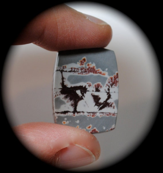 Reserved 24 X 18 X 4 Sonora Dendritic Cabochon