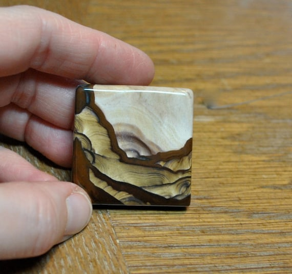 Beautiful Biggs Picture Jasper two sided cabochon or display speciman