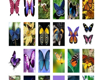 """Butterfly Art Digital Collage Sheet Domino Tile Size 1"""" x 2"""" inch 25mm x 50mm Butterflies No.3 Instant Download"""