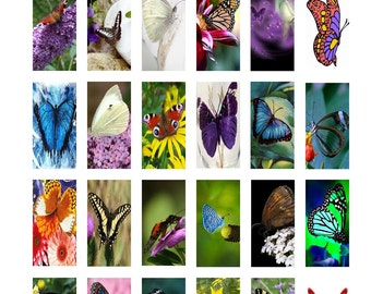 """Butterfly Art Digital Collage Sheet Domino Tile Size 1"""" x 2"""" inch 25mm x 50mm Butterflies No.5 Instant Download"""