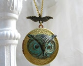 Owl Locket Necklace, Verdigris Owl and Antique Gold Locket, Long Necklace