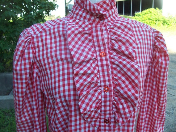 Vintage Down On the Farm Country Girl Gingham Rockabilly Shirt Blouse