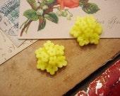 SALE 10Pcs Vintage Lemon Flower Cluster Cabochons - 20mm