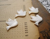 2 Pcs White Shell Dove Charms